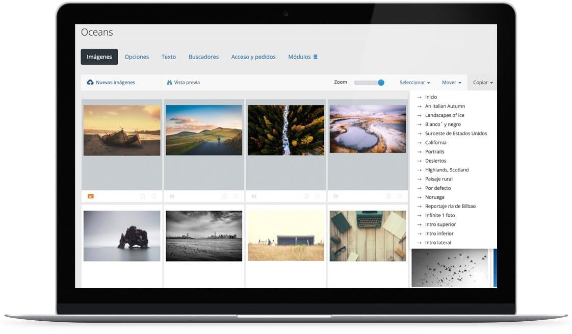 Pantallazo de muestra de como copiar fotos entre galería con nuestro sistema.