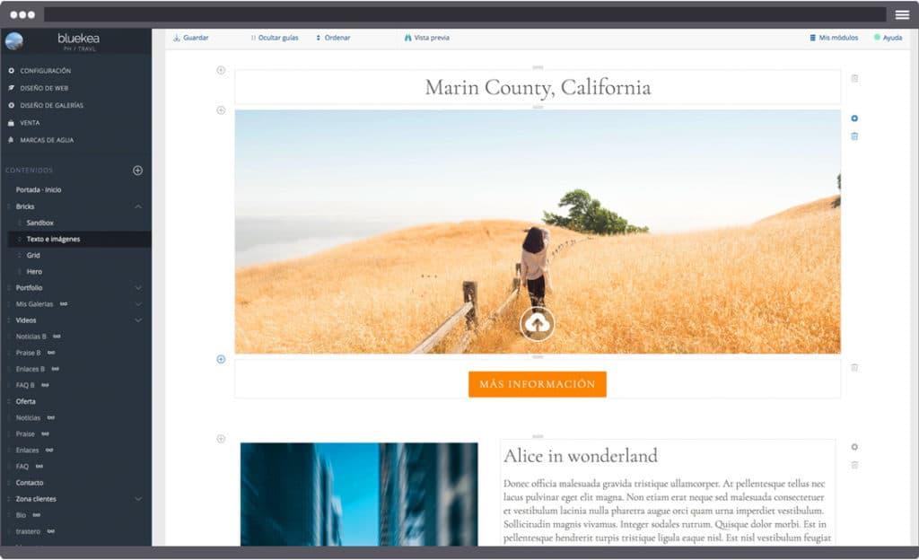 Captura de pantalla de nuestro editor de contenidos en Bluekea.